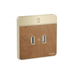 AvatarOn-2 x 2.1A USB Charger, WD