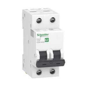 Easy9-63A 2P Isolator
